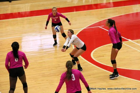 Austin Peay Women's Volleyball loses to Western Kentucky Tuesday night. (APSU Sports Information)