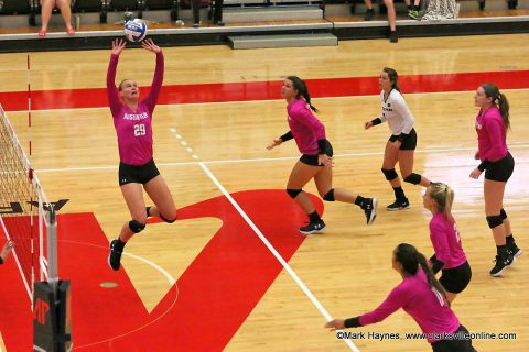 Austin Peay Women's Volleyball plays Belmont and Tennessee State this week at the Dunn Center.
