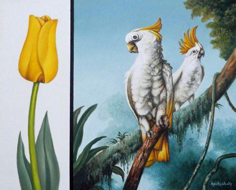 Ann Nichols - White Cockatoos