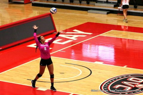 Austin Peay Women's Volleyball junior Christina White cranks out seven aces to help power Govs past Middle Tennessee Wednesday. (APSU Sports Information)