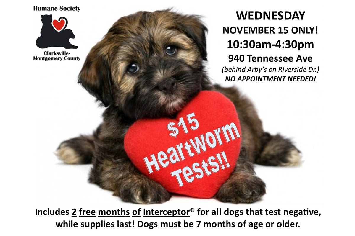 Humane Society of Clarksville-Montgomery County to Offer $15 Heartworm Tests this Wednesday