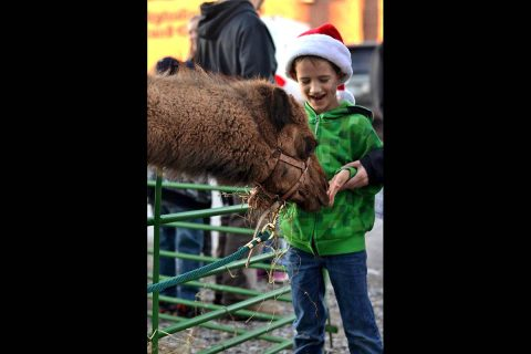 "SpiritFest, a free ""Pre-Parade Celebration of Christmas,"" will feature kids' inflatables, Santa Claus, complimentary hot chocolate and cookies, Christmas music performances by multiple groups, a live nativity including animals, food trucks and two art and gift markets."