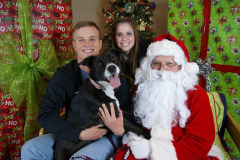Santa Paws Professional Photos to be taken at the Humane Society of Clarksville-Montgomery County this Sunday, December 3rd. (Picture Your Photo)