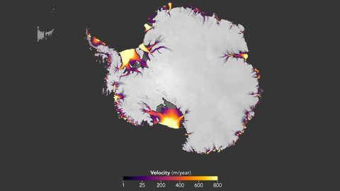 The flow of Antarctic ice, derived from feature tracking of Landsat imagery. (NASA Earth Observatory)