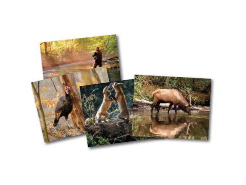 2018-19 Tennessee Wildlife Calendar Issue Photo Contest