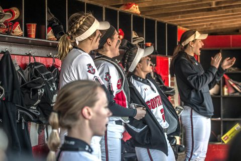 Austin Peay Softball plays in the Mercer Bears Classic this weekend. (APSU Sports Information)