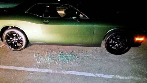 Vandals Damaged 33 Vehicles and 13 Residences over the Weekend. (CPD)