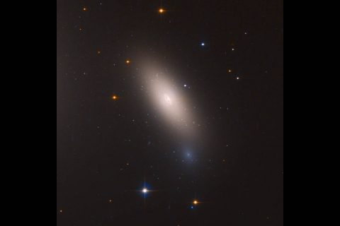 This is a Hubble Space Telescope image of galaxy NGC 1277. The galaxy is unique in that it is considered a relic of what galaxies were like in the early universe. The galaxy is composed exclusively of aging stars that were born 10 billion years ago. But unlike other galaxies in the local universe, it has not undergone any further star formation. (NASA, ESA, and M. Beasley (Instituto de Astrofísica de Canarias))