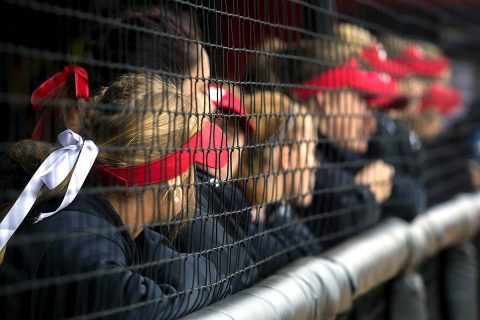 Austin Peay Softball to play doubleheader Friday against Jacksonville State due to rain forecast on Saturday. (APSU Sports Information)