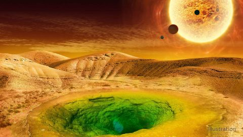 This image is an artist's conception of what life could look like on the surface of a distant planet. (NASA)