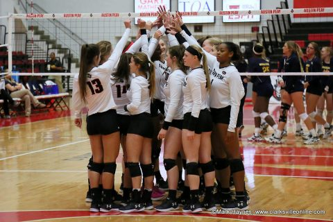 Austin Peay Women's Volleyball to play exhibition match against Trevecca at the Dunn Center Tuesday afternoon.