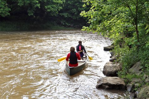 Canoe or kayak the Cumberland River from Liberty Park to Trice Landing Park with Clarksville Parks and Recreation.