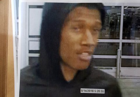 One of the suspects in recent Motor Vehicle Thefts and Burglaries in Clarksville.