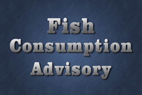 Fish Consumption Advisory
