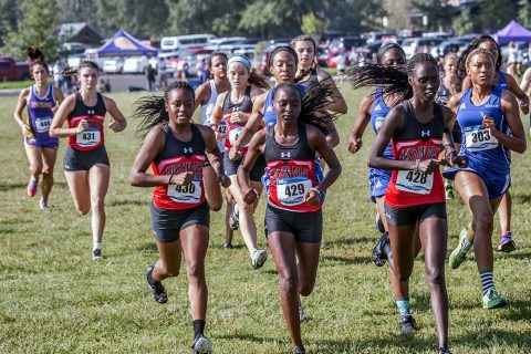 Austin Peay Women's Cross Country comes in sixth at Rhodes College Invitational. (APSU Sports Information)