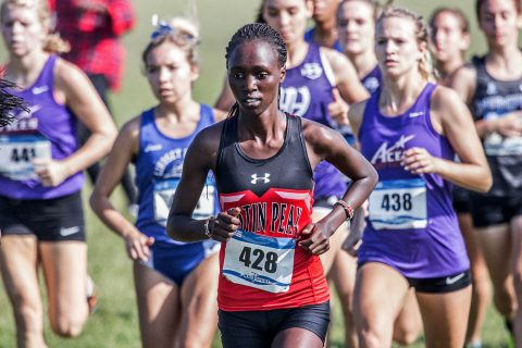 Austin Peay Women's Cross Country to host 2018 Austin Peay Cross Country Festival this Saturday. (APSU Sports Information)