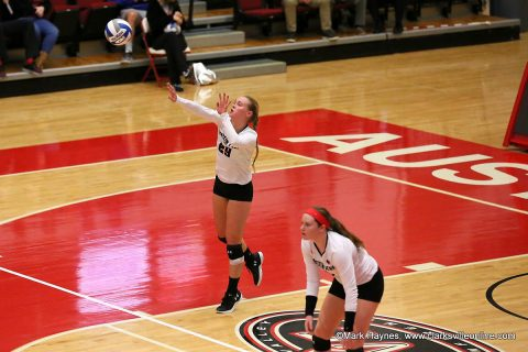 Austin Peay Women's Volleyball begins home schedule Tuesday when it hosts Alabama A&M at the Dunn Center.