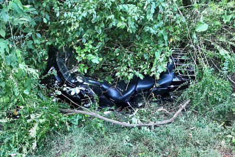 My Harley in the brush. (Hank Bonecutter)