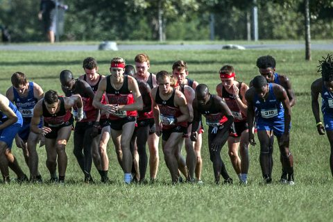 Austin Peay Men's Cross Country look to end the season strong at the Evansville Invitational Saturday morning. (APSU Sports Information)