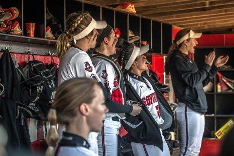 Austin Peay Women's Softball travels to Southern Illinois, Sunday. (APSU Sports Information)