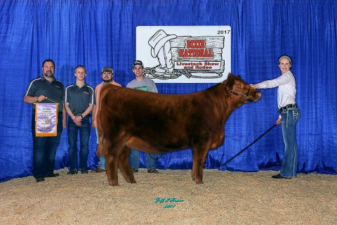 Ruby won reserve division champion at the 2017 Dixie National Livestock Show.