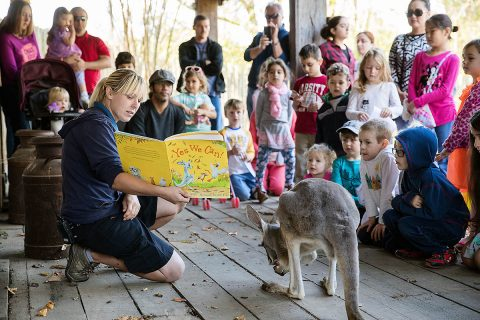 Celebrate Reading at the Nashville Zoo. (Amiee Stubbs)