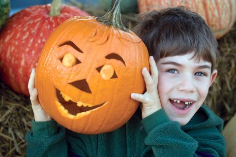 Tennessee Farms offer plenty of Fall Activities. (Tennessee Department of Agriculture)