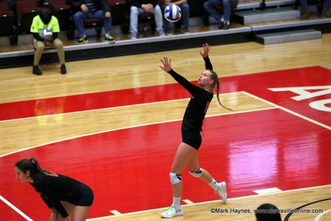 APSU Volleyball's Kristen Stucker ranks 25th all-time in aces with 88.