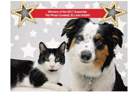 Photo Contest to Select Pet Models for Humane Society of Clarksville-Montgomery County Calendar and Education Billboards. 2018 Calendar superstars, Eli (left) & Nash (right). (Tina Hartman, Picture Your Photo Photography)