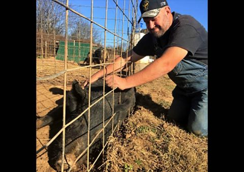 Tennessee Veteran Dennis Scales, owner of Running Hog Farm in Rutherford County.