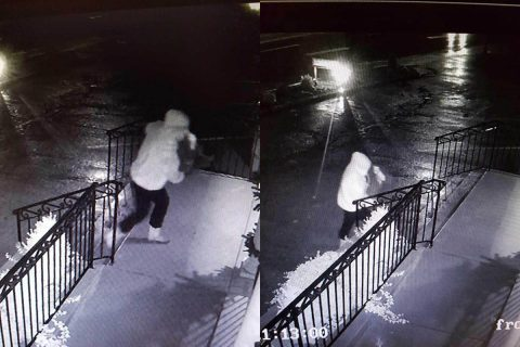 The person that stole the Christmas Decorations can be seen in these photos returning them.