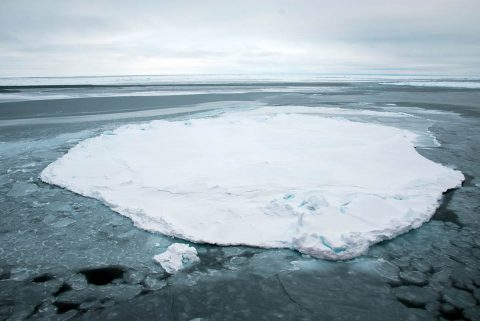 A lone Arctic sea ice floe, observed during the Beaufort Gyre Exploration Project in October 2014. (NASA/Alek Petty)