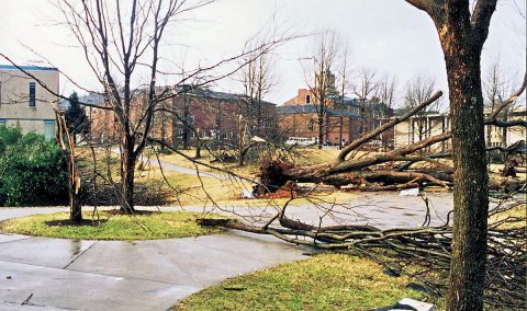 Downed trees littered the APSU campus following the 1999 tornado.