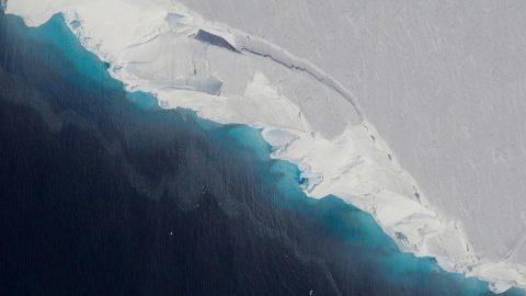 Thwaites Glacier. (NASA/OIB/Jeremy Harbeck)