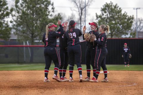 Austin Peay Softball travels to South Carolina for Chanticleer Showdown. (APSU Sports Information)