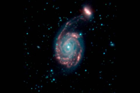 This image shows the merger of two galaxies, known as NGC 7752 (larger) and NGC 7753 (smaller), also collectively called Arp86. In these images, different colors correspond to different wavelengths of infrared light. Blue and green are wavelengths both strongly emitted by stars. Red is a wavelength mostly emitted by dust. (NASA/JPL-Caltech)