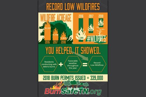 Tennessee has record low number of Wildfires in 2018