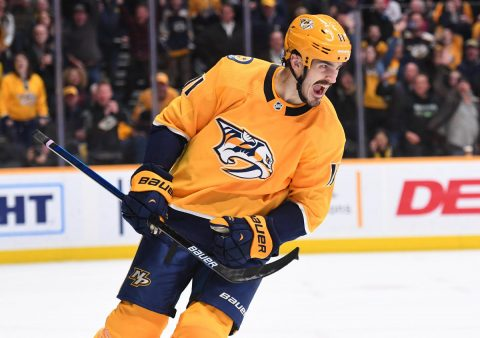 Nashville Predators center Brian Boyle (11) celebrates after scoring the game winning goal in the shootout against the Edmonton Oilers at Bridgestone Arena. (Christopher Hanewinckel-USA TODAY Sports)