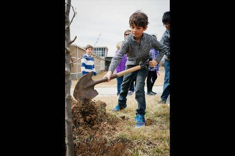 City of Clarksville to plant trees at Barksdale Elementary School.