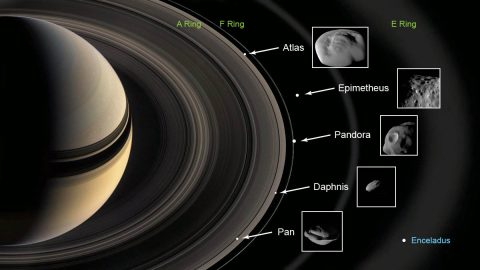 This graphic shows the ring moons inspected by NASA's Cassini spacecraft in super-close flybys. The rings and moons depicted are not to scale. (NASA-JPL/Caltech)
