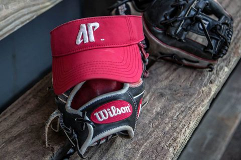 Due to possible thunderstorms, Austin Peay Softball's games at UT Martin, postponed. (APSU Sports Information)