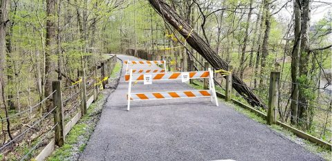 Clarksville Parks and Recreation closes Section of Clarksville Greenway due to fallen tree.