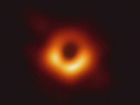 Scientists have obtained the first image of a black hole, using Event Horizon Telescope observations of the center of the galaxy M87. The image shows a bright ring formed as light bends in the intense gravity around a black hole that is 6.5 billion times more massive than the Sun. (Event Horizon Telescope Collaboration)