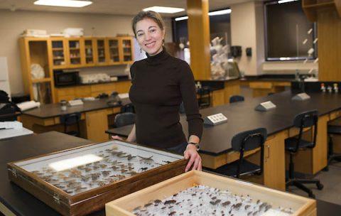 Austin Peay State University professor Dr. Amy Wright.
