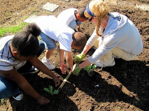 Extension Agent Karla Kean shows children how to plant vegetables during Brandon Hill Garden programs