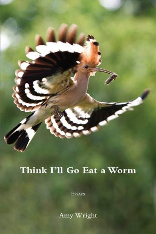 "Essay collection ""Think I'll Go Eat a Worm"""
