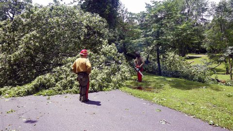 Downed tree blocking a road at Land Between the Lakes. (LBL)