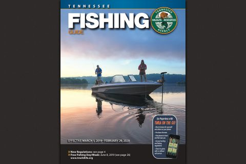 2019-2020 Tennessee Fishing Guide