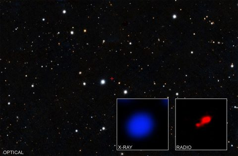 Data from NASA's Chandra X-ray Observatory have revealed what may be the most distant shrouded black hole. (X-ray: NASA/CXO/Pontificia Universidad Catolica de Chile/F. Vito; Radio: ALMA (ESO/NAOJ/NRAO); optical: Pan-STARRS)