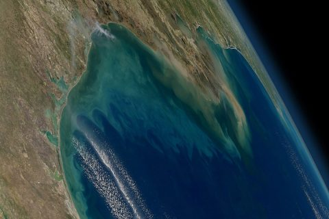 NASA's Geosynchronous Littoral Imaging and Monitoring Radiometer (GLIMR) instrument will collect high-resolution observations of coastal ecosystems in such areas as the northern Gulf of Mexico, shown in this image with phytoplankton blooms stretching from the Texas and Louisiana coast (left) across the Mississippi River delta (center) toward Florida (far right). (NASA)
